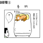 春眠 <猫経理⑤>