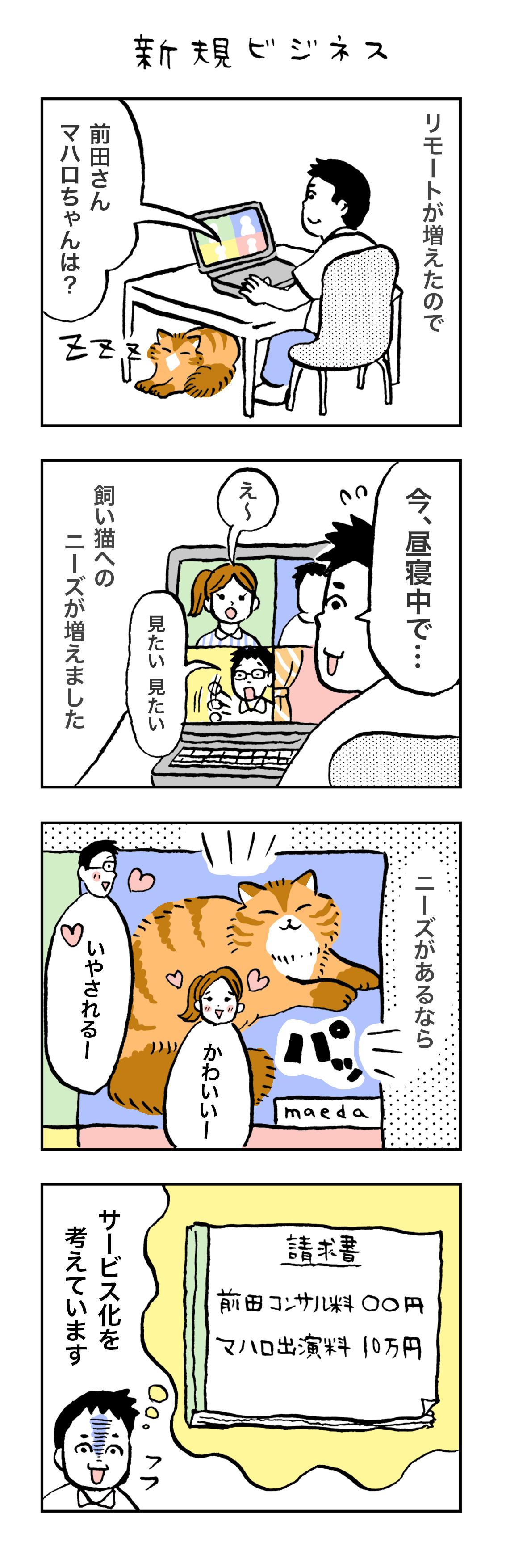 猫経理 新規ビジネス