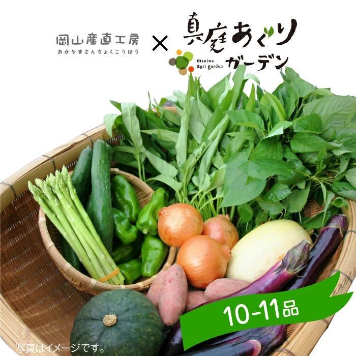 真庭あぐり野菜セット カット野菜が1品入る10~11品